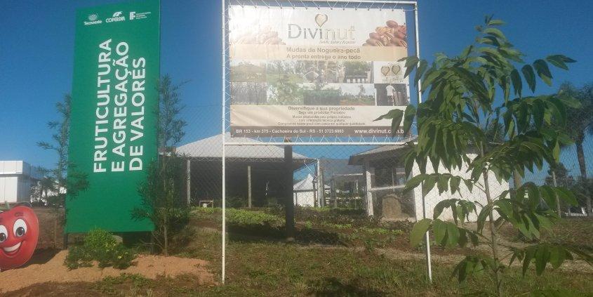 Fotos do plantio de mudas de nogueiras da Divinut no IF SC onde ocorre a Tecnoeste. Estamos aguardando sua visita!