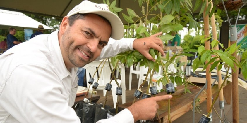 Expodireto 2016: tecnologia substitui o uso de inseticidas para o controle das formigas