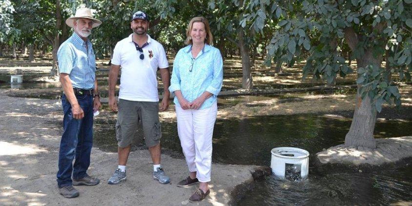 Conhecendo a espetacular fruticultura da Califórnia. Reclamam da falta de água, mas só não fazem chover...