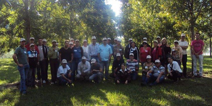 A Divinut ofereceu um curso sobre o cultivo da nogueira-pecã para os produtores de Concórdia/SC.